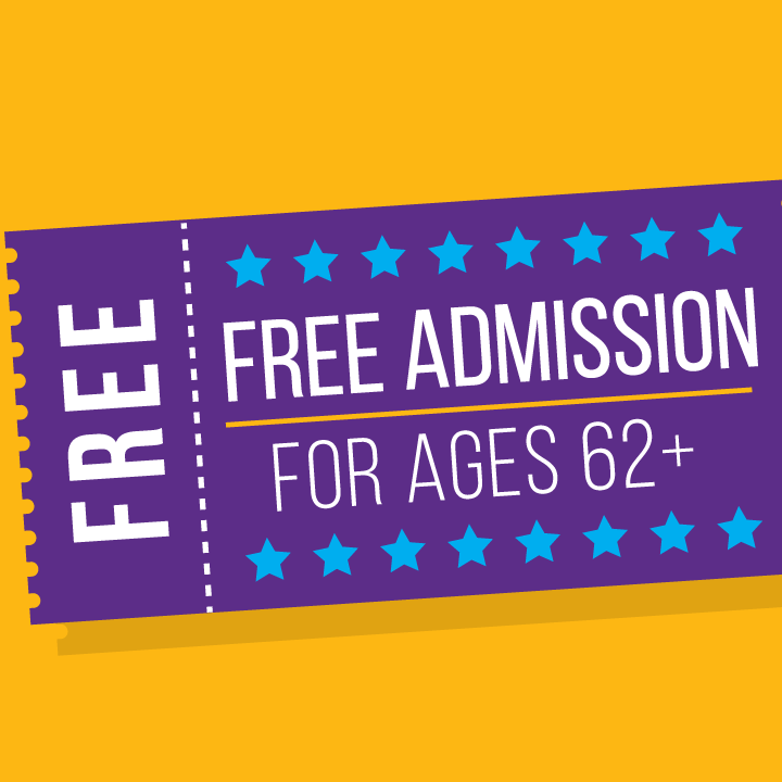 Activity Passes for ISD 728 Residents 62 and Older are Now FREE
